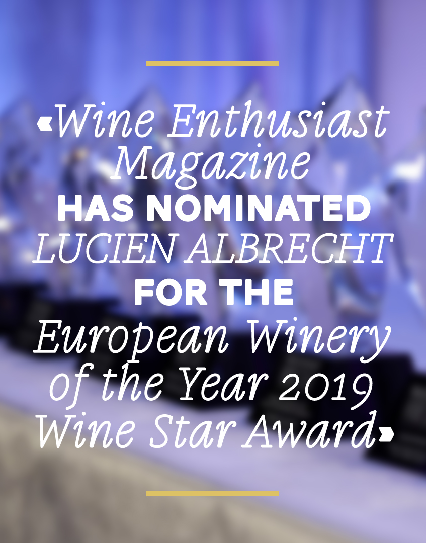 Wine Enthusiast has nominated Lucien Albrecht for the European Winery of the Year Wine Star Awards